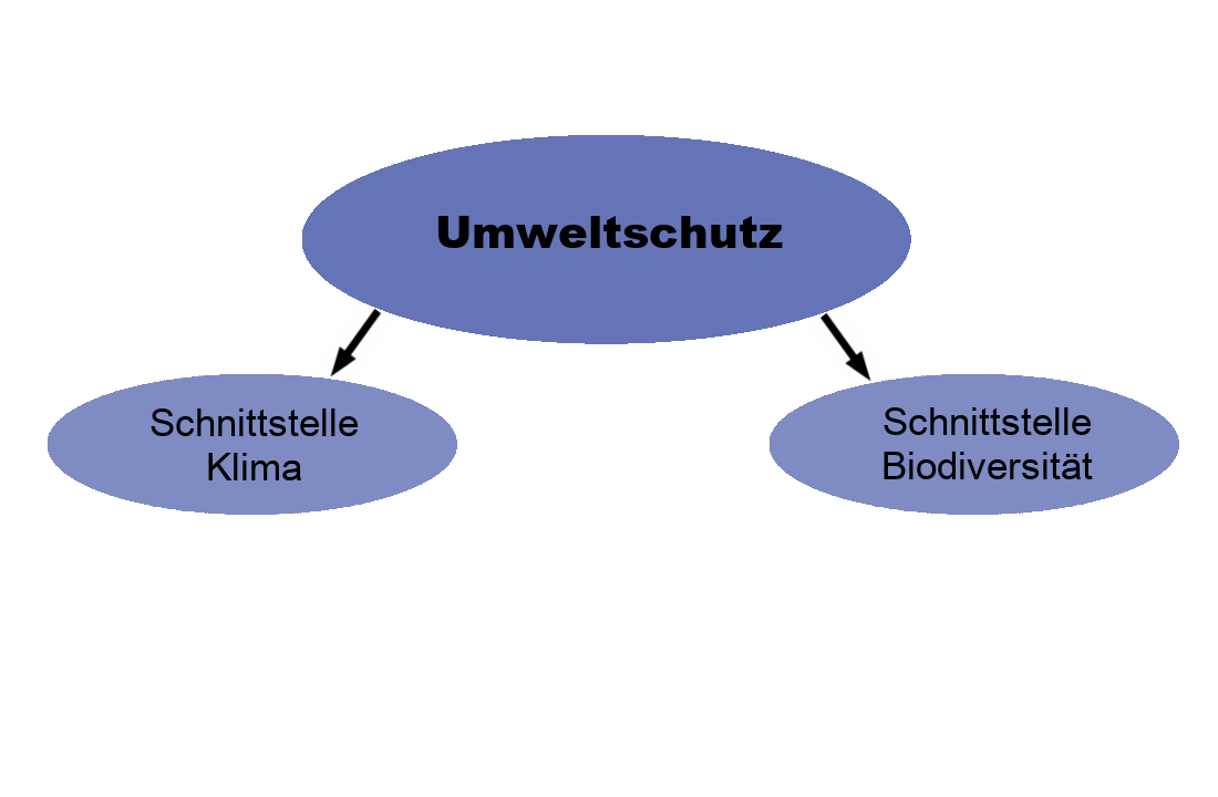 """Grafik, in das Themenfeld """"Umweltschutz und Ressourcennutzung"""" aufschlüsselt. Übergeordnet ein blaues Oval in dem Umweltschutz steht. Davon gehen zwei Pfeile nach unten zu zwei Ovalen in denen steht """"Schnittstelle Klima"""" und """"Schnittstelle Biodiversität""""."""