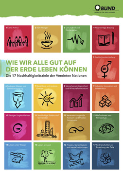 """Publikationscover: Die Icons der 17 nachhhaltigen Entwicklungsziele sind neben- und untereinander angeordneter. In einer Zeile steht anstatt der Icons der Titel der Publikation """"Wie wir alle gut auf der Erde leben können."""""""