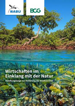 Publikationscover: Da Cover zeigt ein Mangrovenwald. Die obere Hälfte ist überwasser mit den Bäumen, die untere Häkfte zeigt das Ökosystem Unterwasser.
